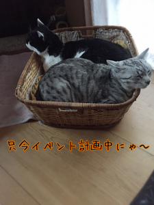 20160421051048.png